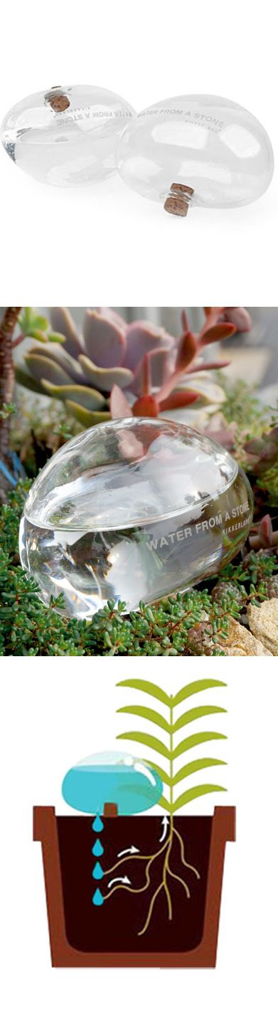 Glass stone slowly waters your plant. Great for when you're traveling.: Watering Stone, Idea, Outdoor, Photo