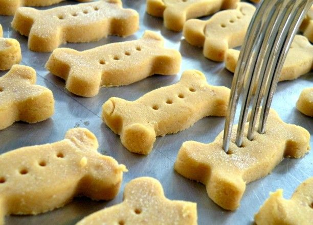 Pumpkin Peanut Butter Pup Treats: Did you know pumpkin soothes your pups stomach? Make these special (and easy!) treats for your pup with a bellyache. Click here for the recipe.: Healthy Homemade Dog Treat, Homemade Dog Treat Recipe, Homemade Dog Biscuit,
