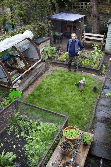 Urban growth: A gardening guru is getting children hooked on the joys of growing fruit and vegetables: Growing Fruit, Gardening Guru, Joy, Urban Gardening, Children Hooked, Fruits And Vegetables, Small Spaces, Backyard