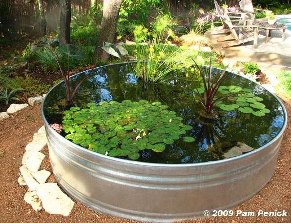 we have a stock tank pond - oblong - sunk in the ground with a small waterfall spilling into one end.  Hint: do not plant flowering trees near or you'll be cleaning your wonderful pond more often.: Pond Ideas, Garden Projects, Water Gardens, Water Fea