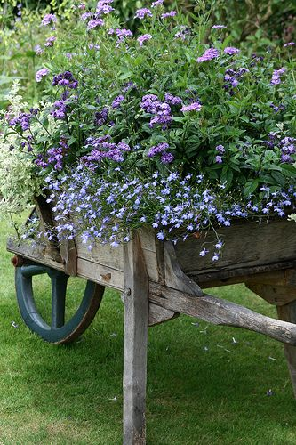 Gardeny Whimsy- gorgeous old wheelbarrow potted with pretty blue & purple flowers.  Now to find an wooden wheelbarrow!: Idea, Container Garden, Wheelbarrow, Gardens, Garden, Flower