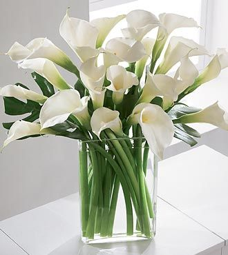 I love the simplicity and elegance of a large bouquet of Calla Lilies, especially in this modern vase.: White Calla, Vase, Wedding Ideas, Calla Lilies, Wedding Flowers, Flower Arrangements, Floral Arrangements, Calla Lily, Favorite Flower