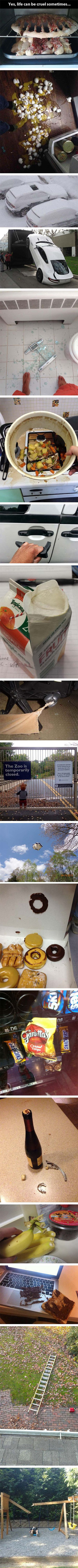 If you thought YOU were having a hard day... That last picture. I'm dying.: Giggle, The Zoo, My Life, Funny Stuff, Thought, Bad Day