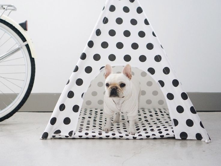 Polka Dots Dog Teepee #Pipolli: Polka Dots, French Bulldog, Teepee Pipolli, Apartment Shopping, Dog Teepee, Dots Dog, Furry Friends, Poochie Stuff
