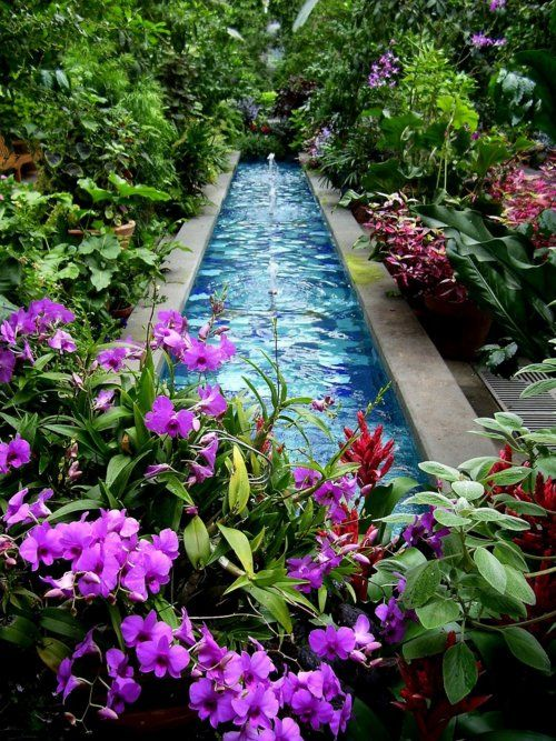 This would be my perfect backyard: Idea, Water Features, Secret Garden, Pool, Outdoor, Gardens, Backyard, Flower