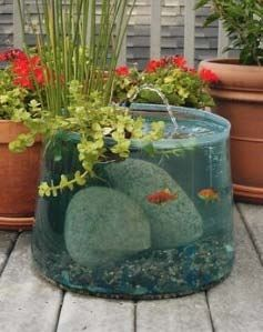 What a cool tank.. i will have to remember this idea.. it could b adapted to in the house too.: Aquarium Pond, Idea, Water Features, Fish Tanks, Pop Up, Fishtank, Water Garden