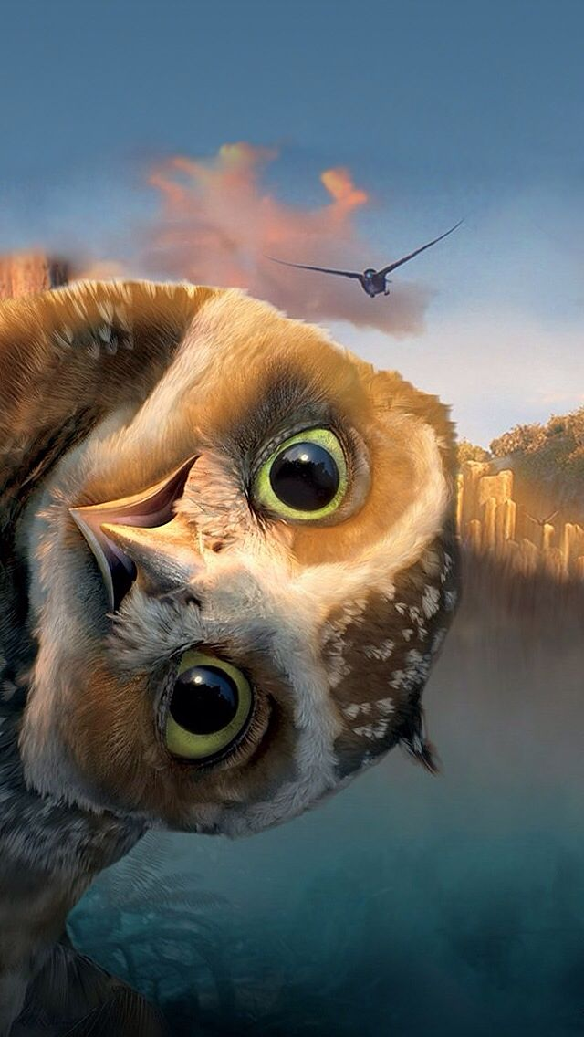 "Who is smarter, prettier, or can fly faster and higher: black birds, blue birds, purple birds, parrots, or owls?!  The wise ole owl says, ""Yada yada yada, whooo gives a hoot!"": Animals, Funny, Movie, Birds, Peek A Boo, Owls"