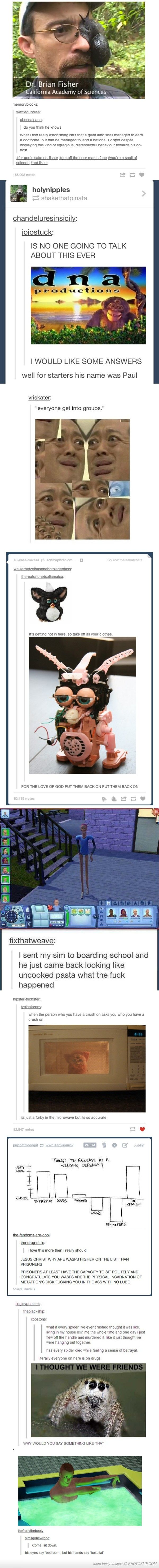 I'm laughing so hard.... HAHAHA: Drugs I, Laughing So Hard, Giggle, I M Laughing, Funny Tumblr Posts, Laugh Sooooo, The Sims