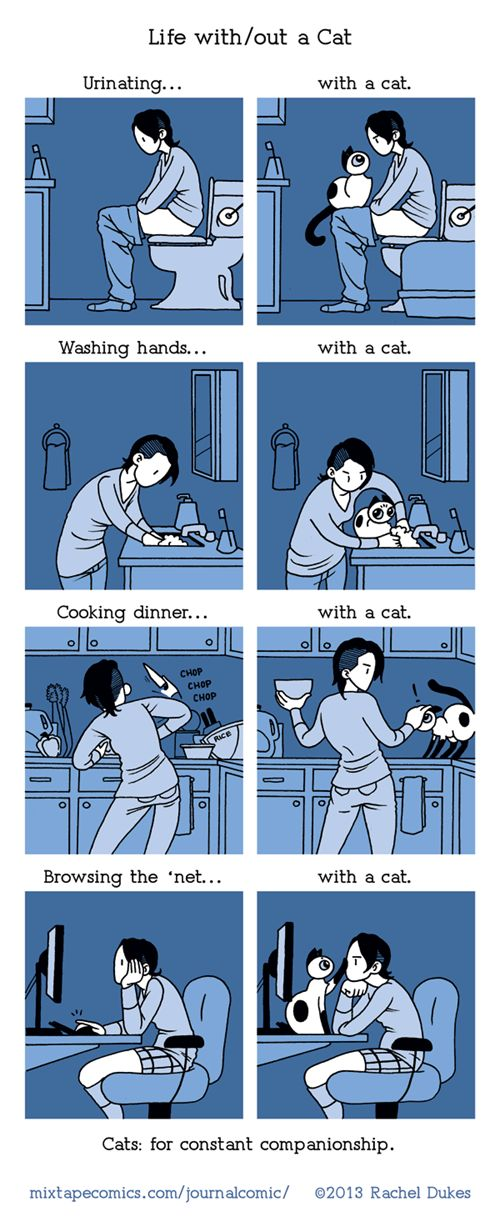 Life With and Without a Cat: Cats, Life With Out, Animals, Funny, So True, Crazy Cat, Kitty, Cat Lady