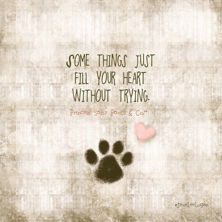 Dogs are THE best!! ..ad this would be cute if you made your own on canvas and used your dogs actual paw print and then have his memory forever!: Cat, Dogs, Dog Quotes, Puppy, Fur Babies, Dogquote, Animal