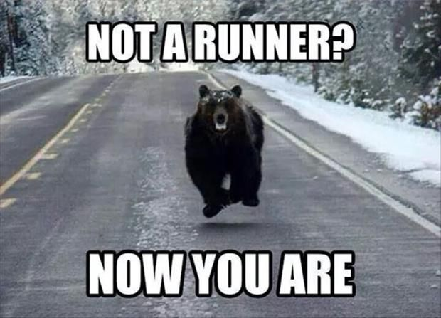 Funny Pictures Of The Day - 96 Pics: Animals, Bears, Motivation, Funny Stuff, Humor, Runners, Funnies, Running