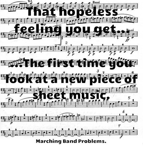 I'm not in marching band, but i know exactly how this feels!: Feeling, Band Geek, Band Clarinet, Flute Band, Band Memes, Band Flute, Marching Band Problems Flutes, Marching Bands