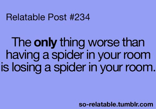 """I usually let the spider out of my room before I lose it and when I lose I'm just like """"you bite me spider and I will end you"""" it never does.: Quotes, Relatable Posts, Truth, Funny Stuff, So True, Hate Spiders, Room"""