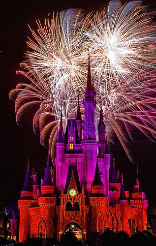 Magic Kingdom - Disney World - Florida. Looking forward to our trip. Can't wait.:
