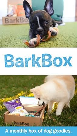 A box of high quality dog products for your pup, delivered to your door every month!  http://ruv.barkbox.com/x/ilXF0v: Good Ideas, Puppy Love, Gift Ideas, Pet, Cute Ideas, Barkbox, By, Dog Products, Monthly Box