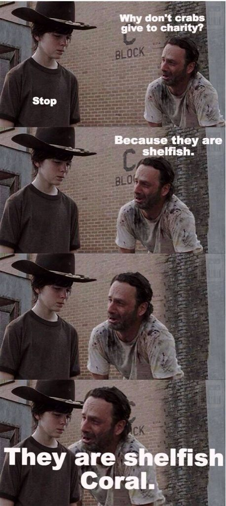 not sure if it's how he says Carl or the stupig joke but I laughed way more than I should have :): Face, Zombie, Carl Grimes Meme, Coral Memes, Funny Dad Memes, Walking Dead Carl Meme, Carl Memes Funny, The Walking Dead Meme
