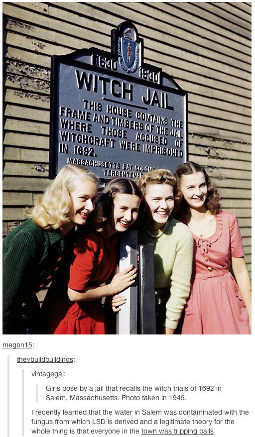 That time Tumblr explained the historical importance of saying no to ~dRUGs~. | 17 Times Tumblr Explained A Thing Better Than School: Thing Better, Witch Trials, School, Vintage, Witches, Witch Jail, Girl Poses, Salem Witch Trial