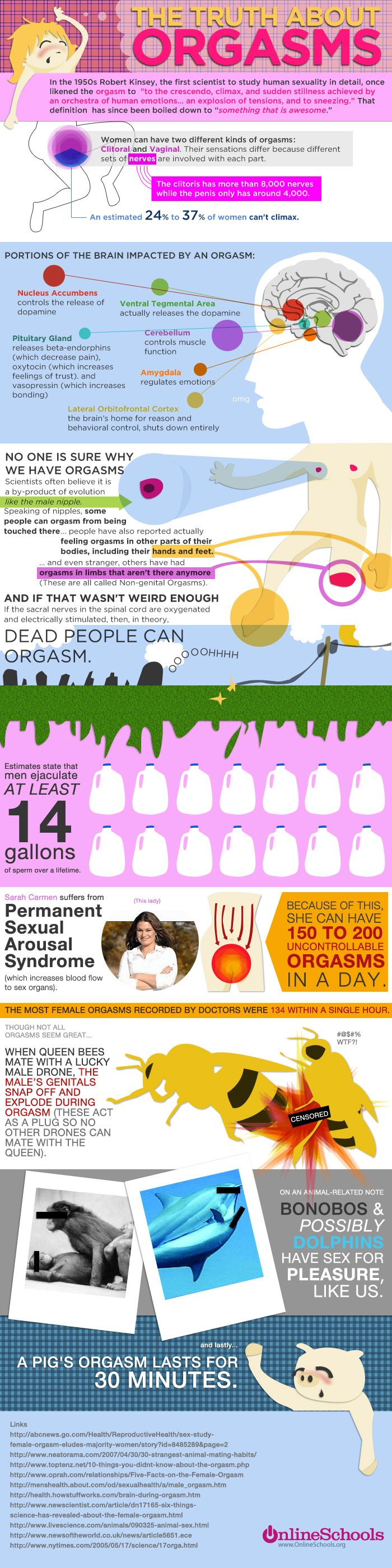 This infographic gives all the facts and information about an orgasm. It shows the portion of the brain that's impacted by an orgasm and other odd facts: Sexual Health, Sex Facts, Orgasms Infographic, Sexy, Dead People, Passion Parties, Fun Facts, Tru