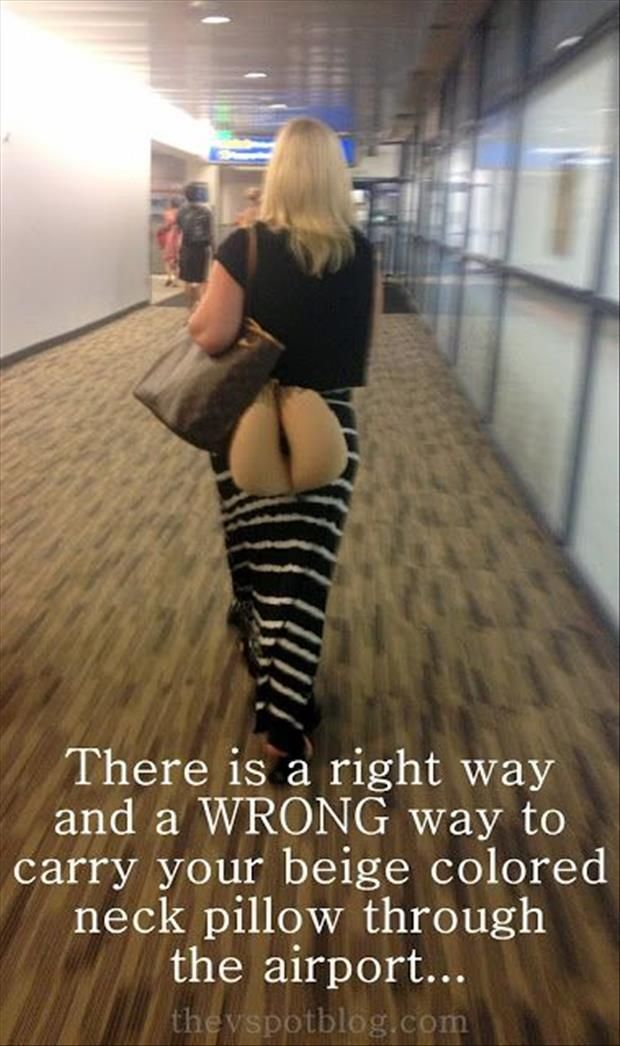 Funny Pictures Of The Day – 83 Pics: Giggle, Funny Stuff, Humor, Funnies, Neck Pillow, Pillows
