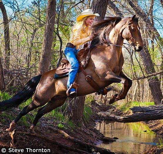 Guthrie, Oklahoma, USA - This is the cover shot I took of Kelly and one of her horses jumping the creek. I really got something in the 2nd jump but I shot 9 total and most worked. I could not spend a lot of time due to needing to return to her ranch, put