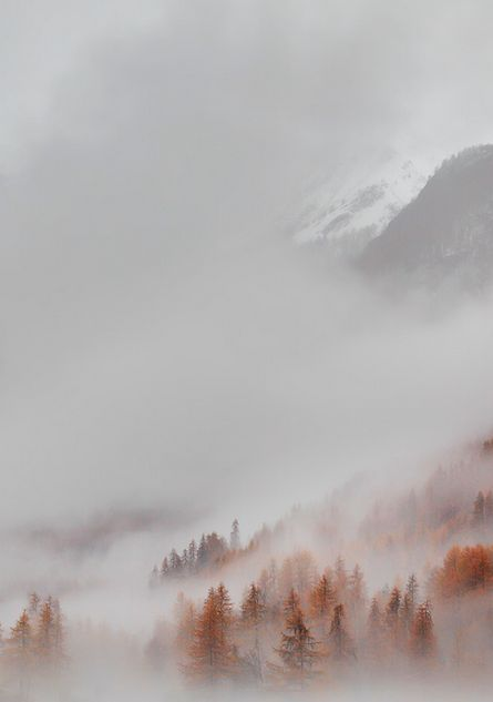 Melancholy by *alexandre-deschaumes http://alexandre-deschaumes.deviantart.com/art/Melancholy-299814345: Misty Forest, Winter Mountain, Landscape, Autumn Fog, Photo