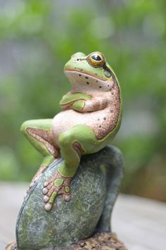 Frog contemplation: Animals, Quote, Funny Stuff, Humor, Funnies, Funny Animal, Things, Frogs