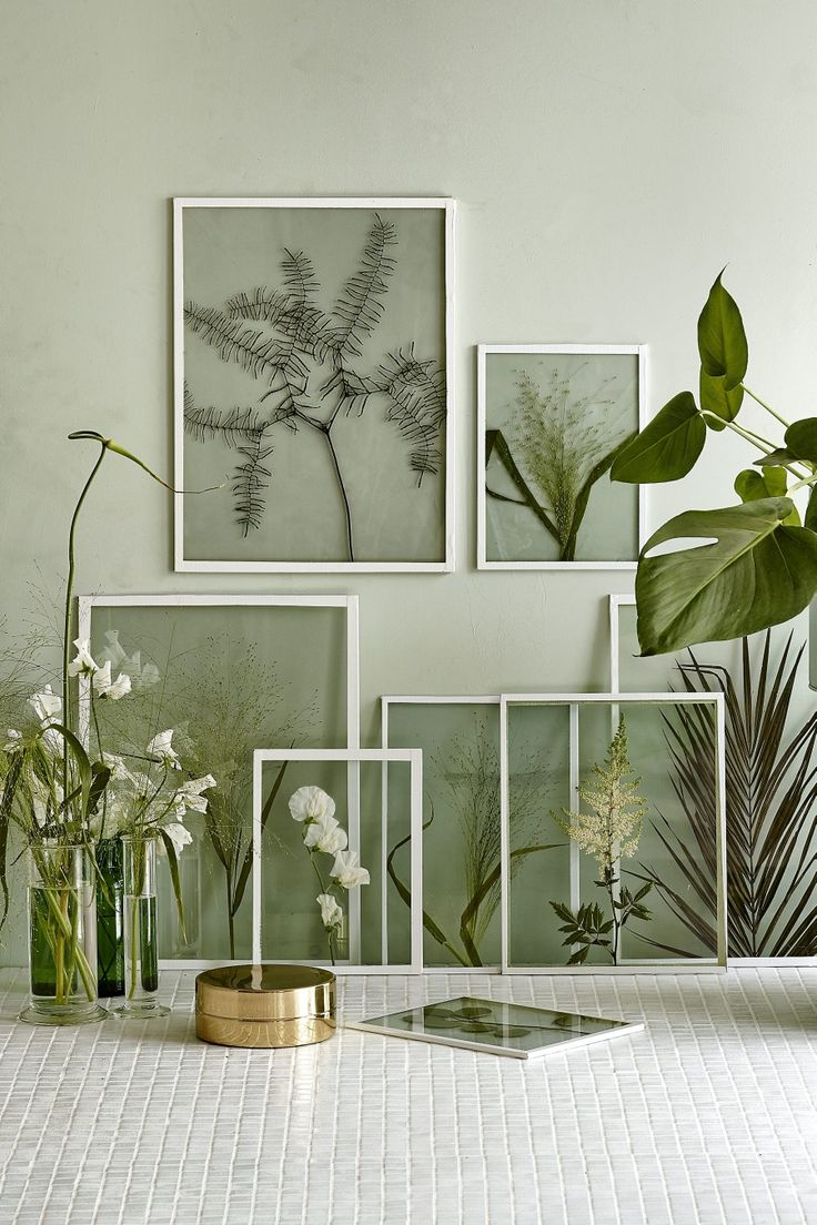 Framing dried plants and flowers in clear glass frames: Diy Frame, Interior, Frame Plant, Green Wall, Plant Frame