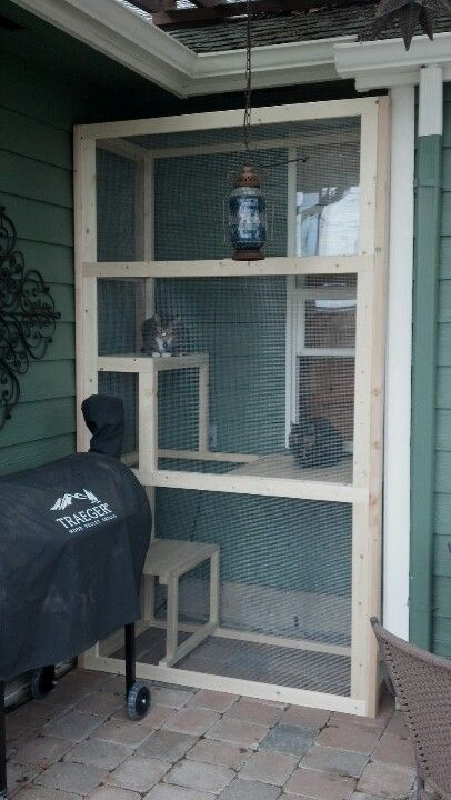 LOVE this screened in outdoor cat area.. My inside cats would LOVE to be able to climb out a window for some fresh air: Cat Enclosure, Cat Window Box, Cat Litter Box, Indoor Cat, Outdoor Cat House, The Idea Of Building, Cat Tree, House Cat