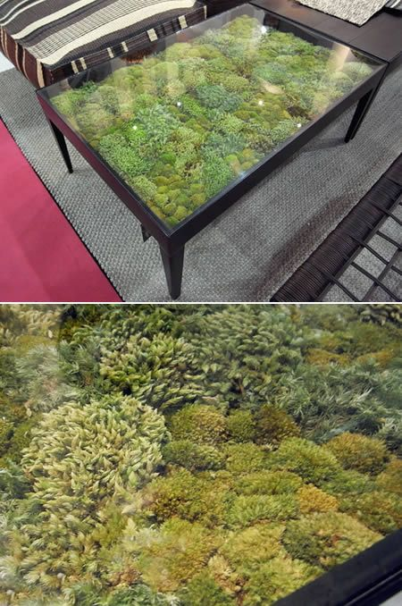 Thai home furniture company Ayodhya's Secret Garden Collection managed to bring nature indoors - without the effort and attention that traditional, live plants require. Each table consists of various types of dried moss beneath a transparent glass tab