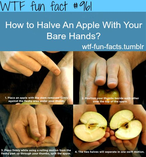 WTF Facts : funny, interesting  weird facts: Wtf Fun Fact, Barehands, Bare Hands, Weird Facts, Fun Facts, Apples, Life Hacks, Random Facts