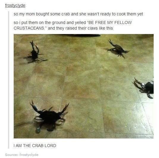 32 of the Greatest Things That Have Ever Happened on Tumblr. Seriously I don't know what people not on tumblr do with their lives: Giggle, Funniest Conversations, Conversations You Ll, Be Free, Crab Lord, Funny Stuff, 30 Funniest, Greatest Things