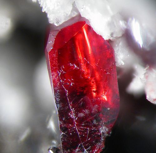 Gem red proustite crystal / Dolyhir Quarry, Wales. Never heard of this one.  Beautiful!: Gems Crystals Minerals, Red Proustite, Gemmy Red, Gemstones Crystals, Gemstone Rocks, Proustite Crystal, Gemstones Minerals Crystals