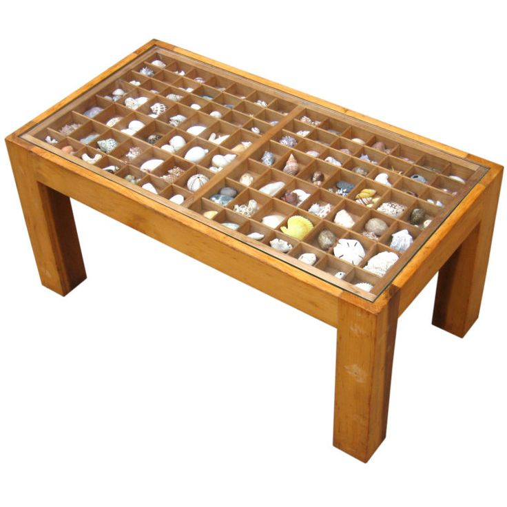 Shell collection box ..... or use to display Gem Stones !!!: Seashell Crafts Trees, Beach Hut, Must Seashells, Beach Glass, Coffee Table, Beach Houses, Collection Boxes, Craft Ideas, Seashell Collection
