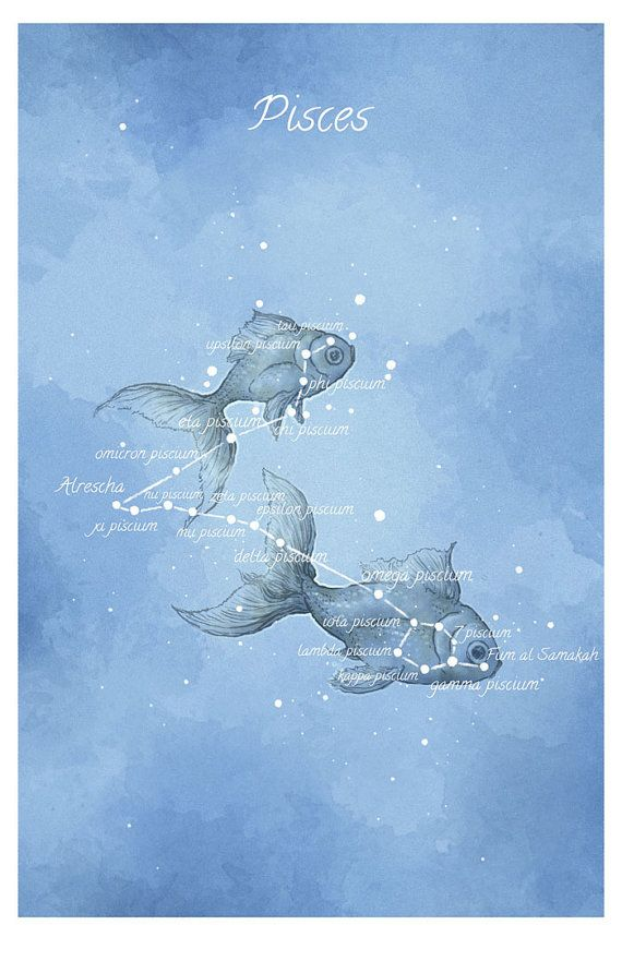 Astronomy art Pisces constellation fish by LaPetiteMascarade: Pisces Sign, Pisces Picture, Astronomy Art, Fish Tattoo, Pisces Constellation, Pisces Tattoo, Art Pisces, Constellation Fish
