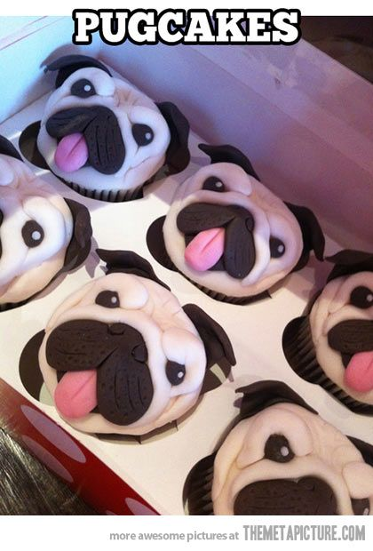 More delicious cupcake recipes here - http://dropdeadgorgeousdaily.com/2014/02/vanilla-cupcakes-with-whipped-cream-and-blueberry-drizzle-recipe/: Pug Cakes, Ideas, Pug Cupcakes, Sweet, Food, Pugcupcakes, Pugs, Pugcakes, Dog