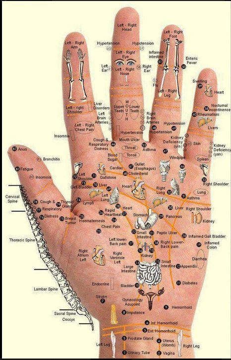 Reflexology Chart - Hand Points.    Press with thumb for 5 seconds for 3 seconds, in the affected point. Repeat for 2-3 minutes for 5 to 10 days.: Massage, Acupressure Points, Hands, Fitness, Essential Oils, Healthy, Beauty, Hand Reflexology