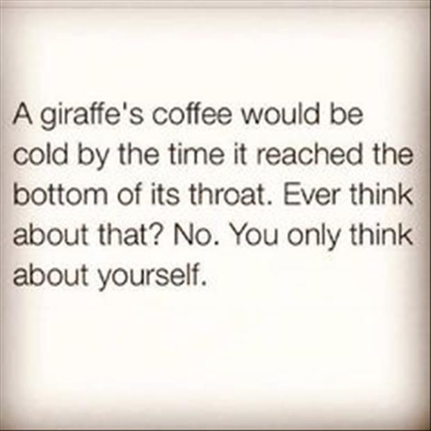 Top 29 Collection Of #Random #Funny #Quotes That Go Viral This Year: Hilarious Quote, Rude Quote, Selfish Bastard, Funny Coffee Quote, Poor Giraffe, Funny Quotes, Giraffe Quote, Random Funny Quote, Giraffes