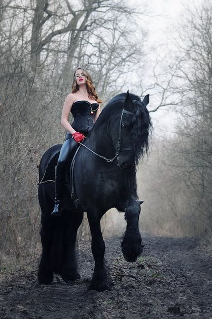 Girl, corset, black Percheron before it turns grey? Horse could carry knight in full armor. Gosh: Beautiful Horses, Animals, Girl, Grey Horses, Friesian Horse, Black Percheron, Black Horses, Percheron Horse, Carry Knight