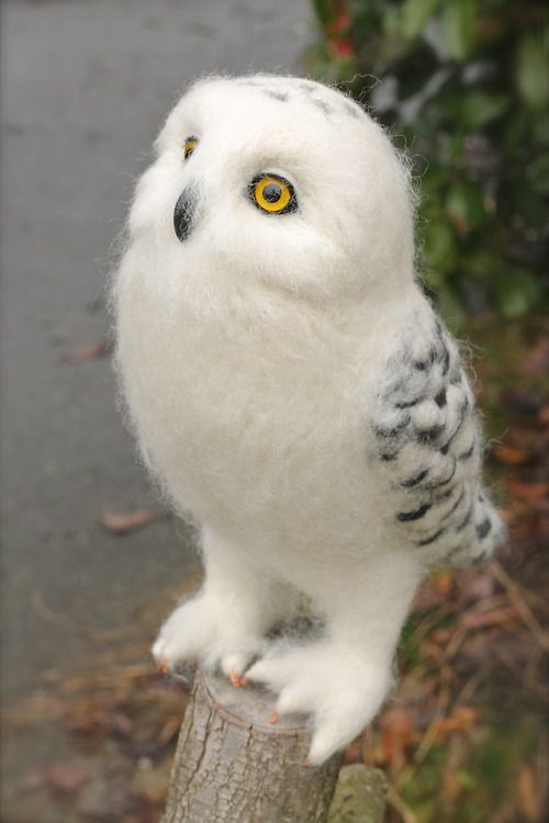 Looook at those feeeeet!!! I want him, and I want him to bring me letters like in Harry Potter >_ @katiewilkes88: Felted Snowy, Baby Owl, Needle Felting, White Owl, Snowy Owl, Owls, Animal