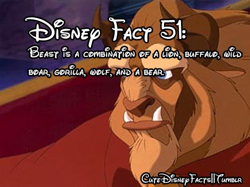 I always wondered what the beast really was: Creepy Disney Facts, Disney Stuff, Disneyfacts, Disney Pixar, Beauty And The Beast, Fun Facts, Interesting, Cool Disney Facts, Things Disney