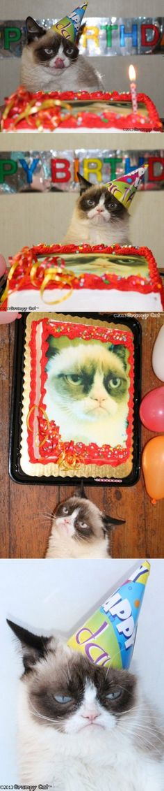 It's Grumpy Cat's Birthday! I want a grumpy cake!