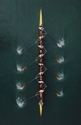 : ⚓ Rows Before Hoes ⚓: Crew Rowing, Coxing Rowing, Oarsome Rowing, Images, Remo Olimpico, Rowing 3, Rowing Book, Outdoor Sports