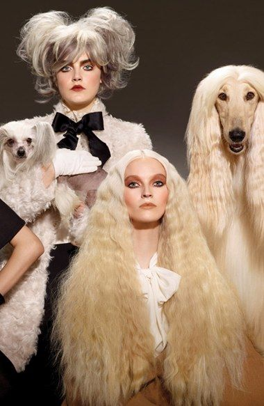 the color of the season: Colour Collection, Official Site, Mac Haute, Dogs Colour, Google Search, High Dogs, Color Collection, Mac Cosmetics, Dogs Color