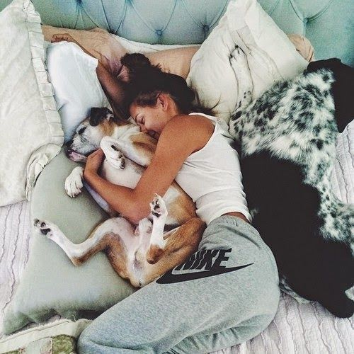 8 Signs That Your Dog Actually Loves You: Animals, Girl, Dogs, Bed, Pet, Lazy Days, Friend, Nike