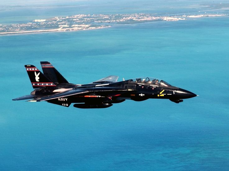 F14 Tomcat BlackBunny: Military Aircraft, Airplanes, Air Force, Aircraft, F14, Navy, F 14 Tomcat, Fighter Jets