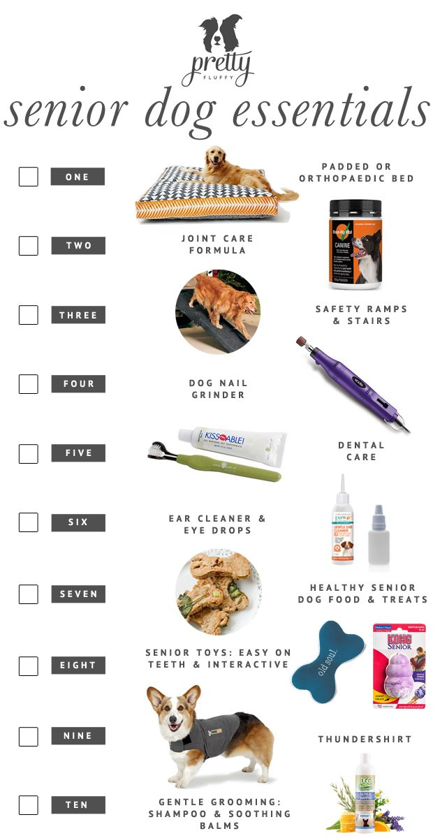 Must have! Senior Dog Checklist - Everything you need to keep your 7+ year old dog happy and healthy in their later years. | Pretty Fluffy | www.prettyfluffy.com: Old Dogs, Senior Pet, Older Dog, Dog Checklist, Year, Pretty Fluffy, Senior Dog