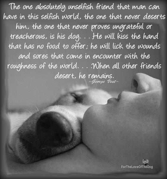 This has been true of every dog Ive owned and I miss each one so very much. If there are no dogs in heaven then I want to go where dogs go when they die.: Doggie, Animals, Best Friends, Dogs, Pet, So True, Puppy, Man