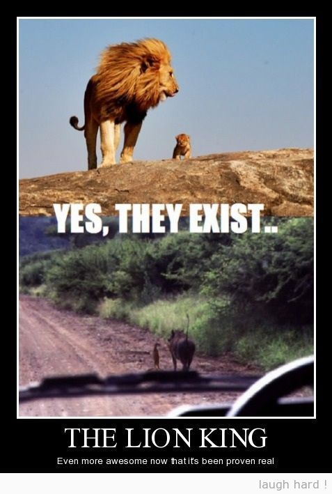 The Lion King. This makes me happy: Disney Movies, Lionking, Funny Disney, Awesome, King Exists, Disney Pixar, Things, The Lion King
