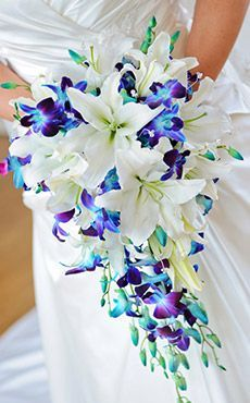 tropical wedding bouquets blue - Google Search: Tropical Wedding Bouquet, Blue Orchid Bouquet, Blue Orchids, Wedding Ideas, Wedding Bouquets, Wedding Flowers, Blue And Purple Wedding