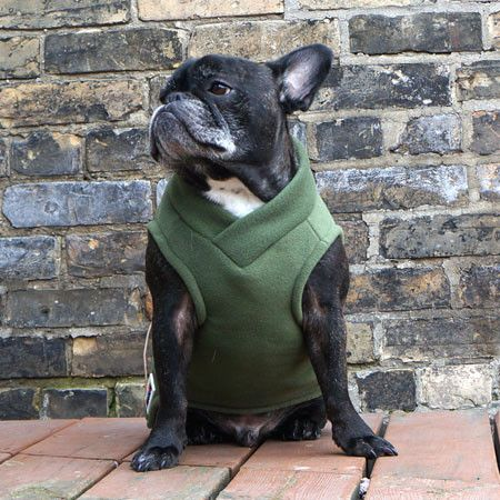 Olive Green French Bulldog Pug Fleece Sweater // Babies and Beasts: Olive Green, French Bulldogs, Sweater Babies, Pug Fleece, Baby